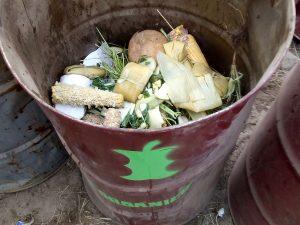 Contenedor de orgánico en Woodstaco  2020